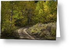 Fall Roads Greeting Card