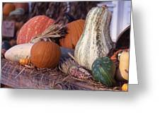 Fall-roadside-produce Greeting Card
