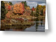 Fall Scene 3 Greeting Card