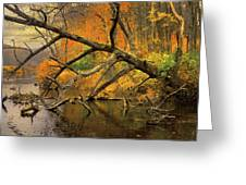 Fall Scene Greeting Card