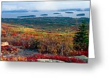 Fall Scenic View Of Bar Harbor Greeting Card