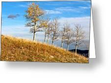 Fall Sentinels Greeting Card