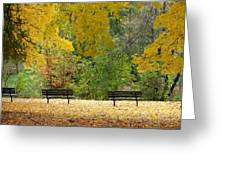 Fall Series 12 Greeting Card