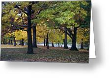 Fall Series 14 Greeting Card