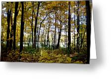 Fall Series 3 Greeting Card