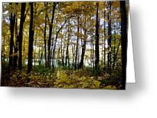 Fall Series 3 Greeting Card