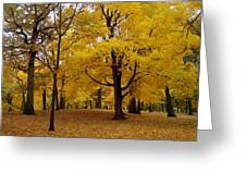 Fall Series 5 Greeting Card