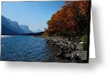 Fall Shoreline. Greeting Card