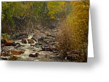 Fall Snow Storm Greeting Card