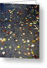 Fall Sparkle Greeting Card