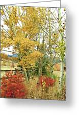 Fall Splendor Greeting Card