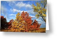 Fall Sunrise On Hackmatack Nwr Oaks Greeting Card