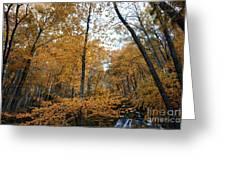 Fall Tees At  Yankee Horse Overlook   Greeting Card