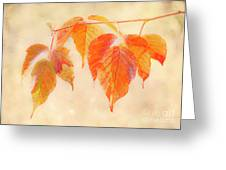 Fall Together Greeting Card