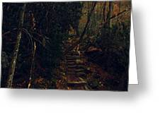 Fall Trail Greeting Card