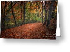 Fall Trail Greeting Card