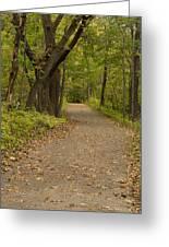 Fall Trail Scene 45 A Greeting Card