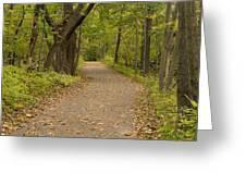 Fall Trail Scene 45 B Greeting Card