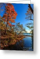 Fall Trails Greeting Card