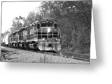 Fall Train In Black And White Greeting Card by Rick Morgan