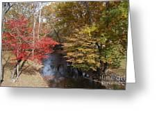 Fall Transition Greeting Card