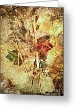 Fall Treasures Greeting Card