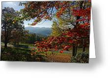Fall Tree Colors II Greeting Card