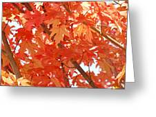 Fall Trees Colorful Autumn Leaves Art Baslee Troutman Greeting Card