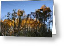 Fall Trees Reflected Greeting Card