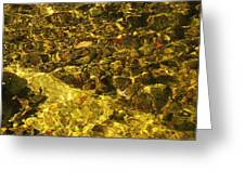 Fall Under The Water Greeting Card
