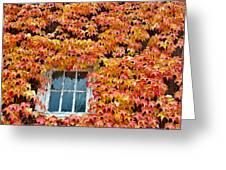 Fall Window Greeting Card