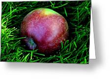 Fallen Apple Greeting Card