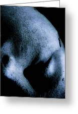 Fallen Face Greeting Card