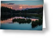 Fallen Leaf Sunset Serenity Greeting Card