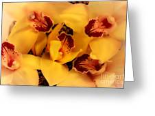 Fallen Orchids Greeting Card