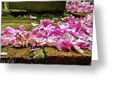 Fallen Petals Greeting Card