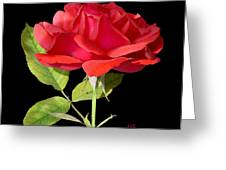 Fallen Red Rose Cutout Greeting Card