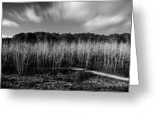 Fallen Timbers Battlefield Greeting Card