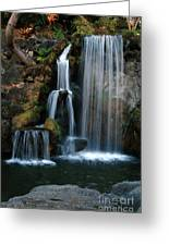 Falling For You Greeting Card by Clayton Bruster