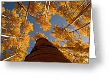 Falling Sky Greeting Card