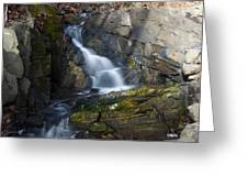 Falling Waters In February #2 Greeting Card