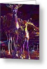 Fallow Deer Doe Fawn Hirsch Young  Greeting Card