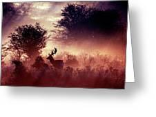 Fallow Deer In Fairytale World Greeting Card