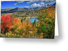 Fall's Finery At Rock Creek Lake Greeting Card