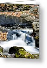 Falls In Fall Greeting Card