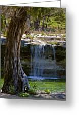 Falls Into Cow Creek Greeting Card