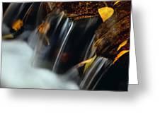 Falls Of Autumn Greeting Card