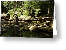 Falls Park Greeting Card