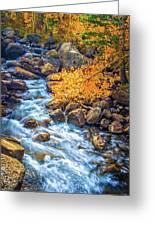 Fall's Rush To South Lake Greeting Card