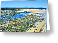 False Bay Low Tide Greeting Card by Jan Hattingh